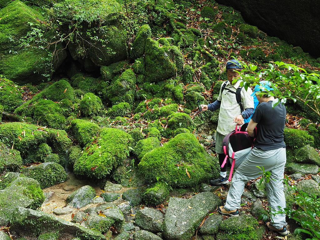もの凄い苔むした小さな谷を目の前にしてザックからカメラを出そうとするOさんとそれを手伝うNさんの写真