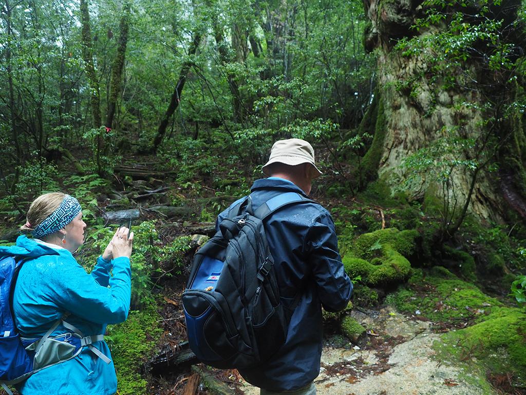 釈迦杉を前にカナダから来られた参加者お二人の写真