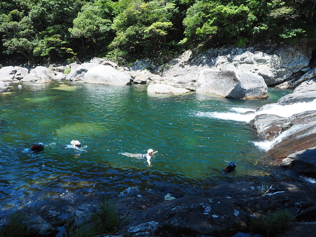 写真いっぱいいっぱいの淵の中を、4人が一列になって泳いでいる写真
