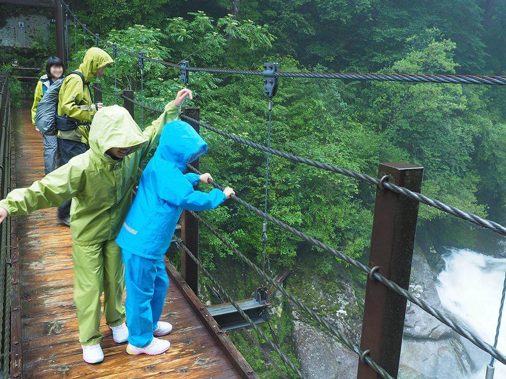 吊り橋で怖々と手すりを持つお子さん二人とご両親の写真