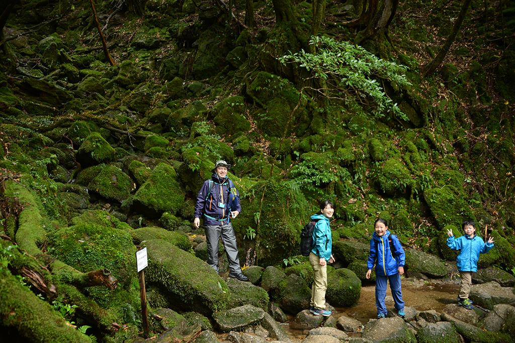 雨に濡れた濃い緑に覆われる白谷雲水峡で撮った一枚の家族写真