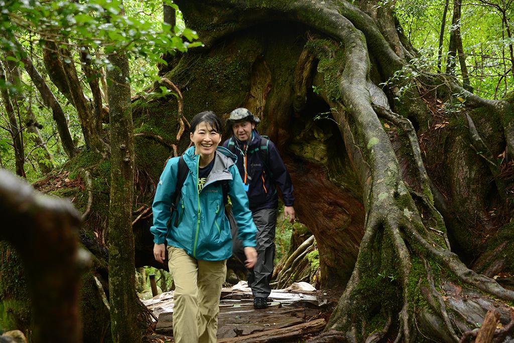くぐり抜ける事が出来る杉の下を通って微笑みを返してくれた奥さんのMさんの写真