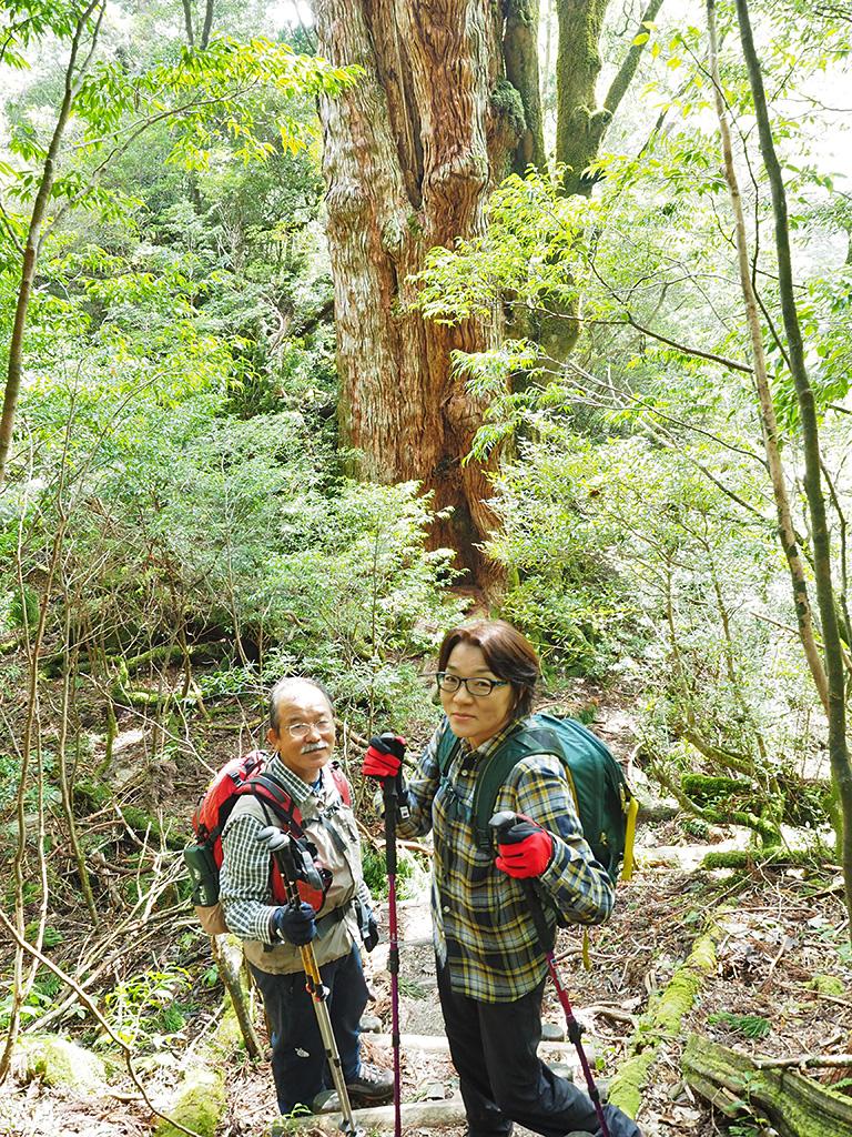 大和杉との対面を終えて、最後にお別れを伝えた所を撮った写真