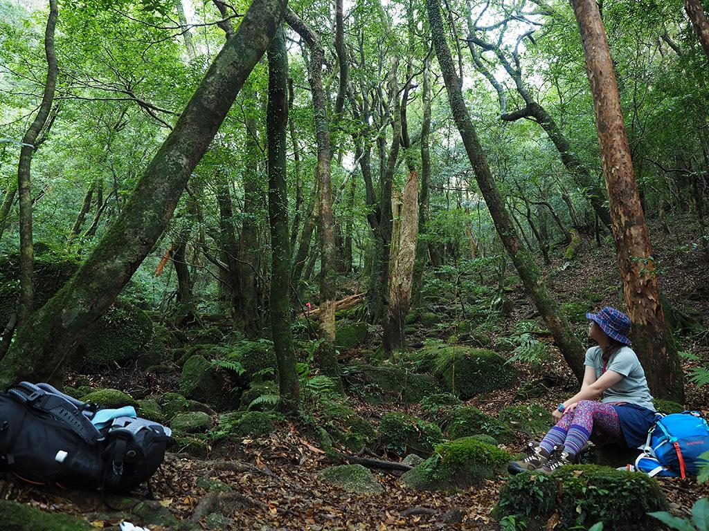 苔むした沢の近くで休憩する参加者の横顔写真