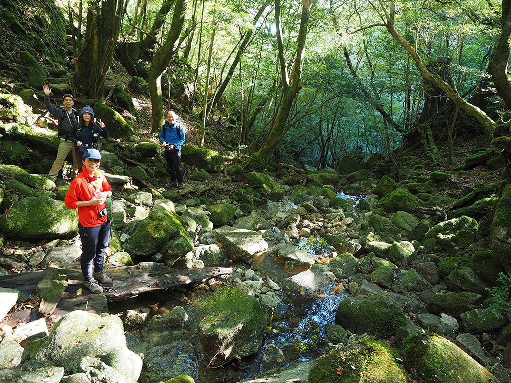 苔豊かな河原で、写真をとったり水を汲んだりしている写真