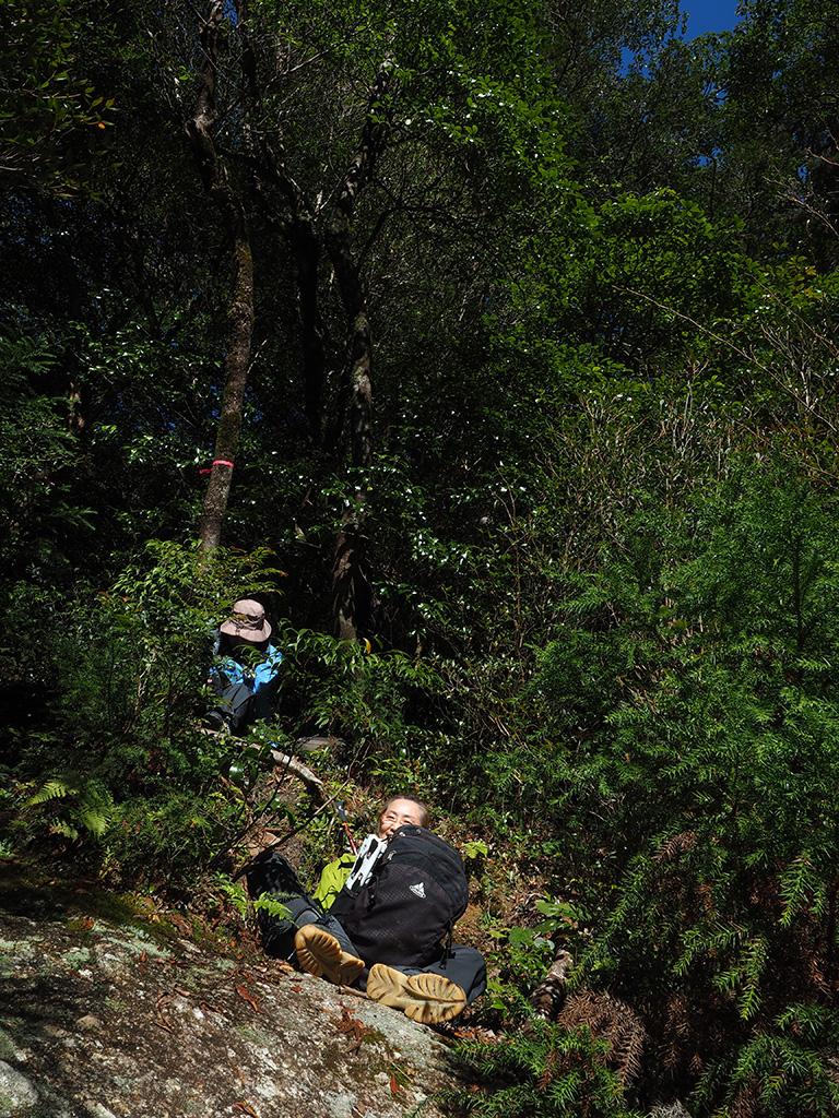 ちょっと斜めの岩の上で、各々座ったままお昼寝をしている二人の写真