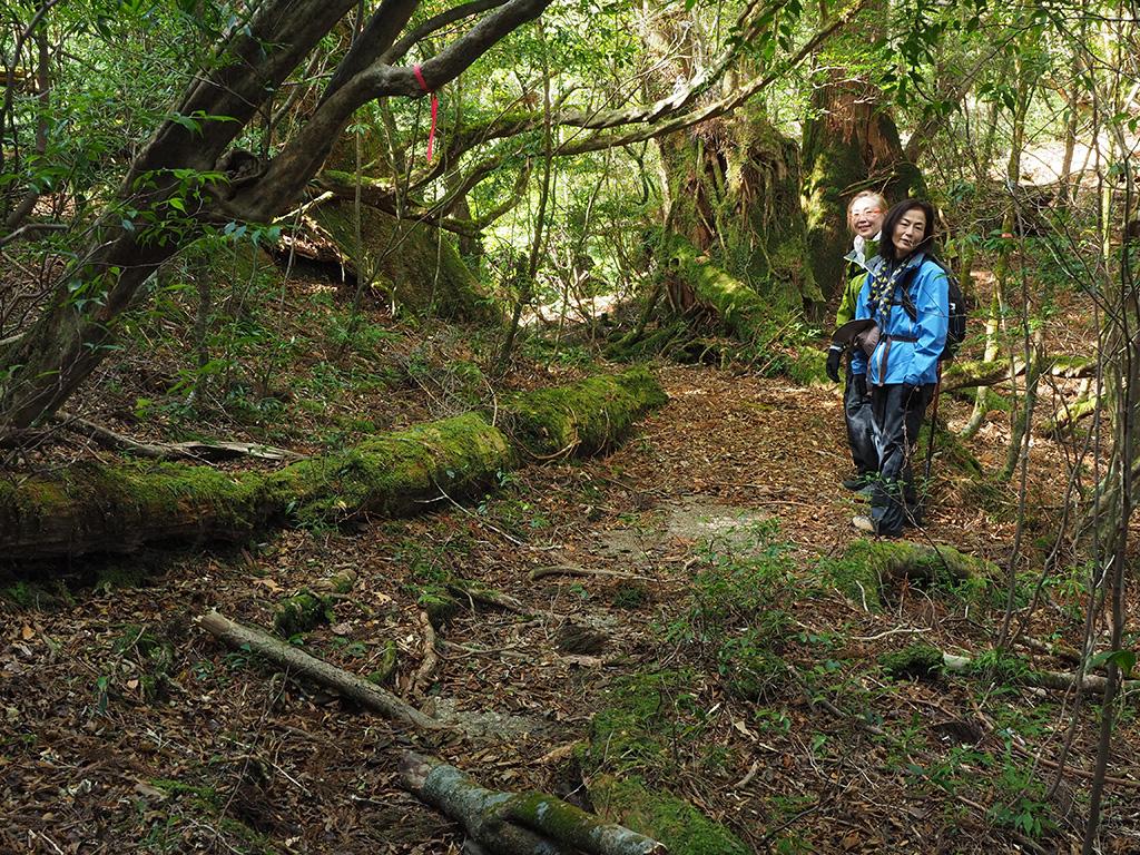 奥へ続く道と苔の雰囲気が良かったので、二人の参加者と一緒に撮った写真