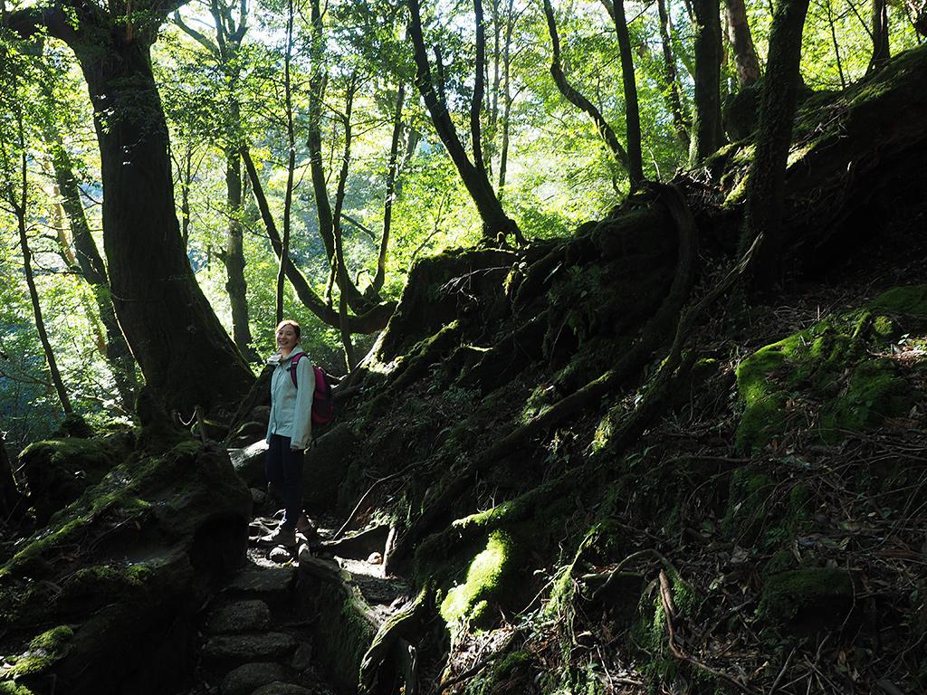 美しい木漏れ日の中、振り返るYさんの写真