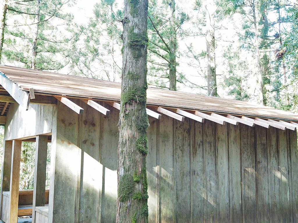 小杉谷休憩舎修繕完成写真外側