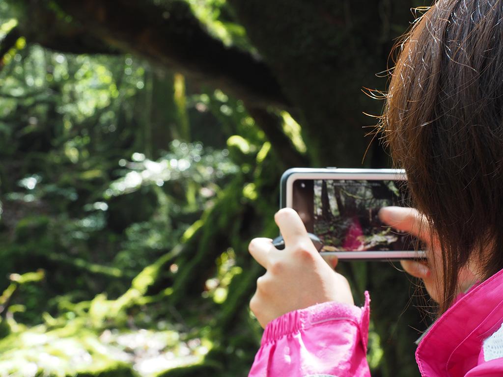 美しい景色を前に、スマホを撮る手元と横顔をアップ