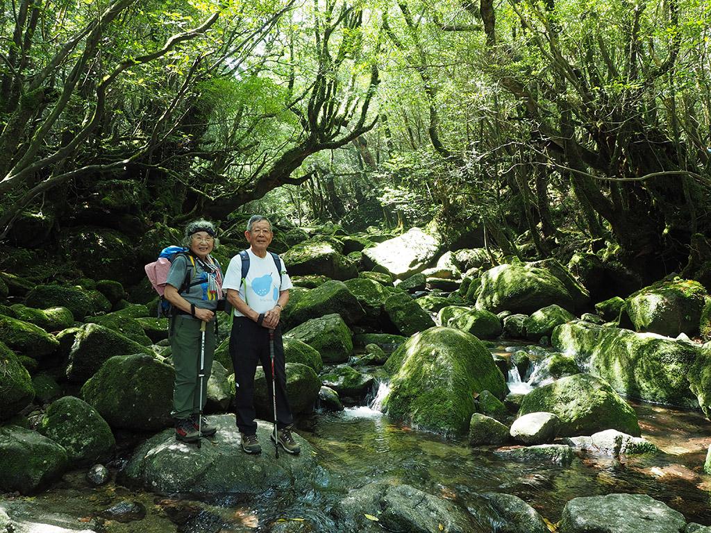 3年ぶりの屋久島で白谷雲水峡・苔むす森まで行って来ました