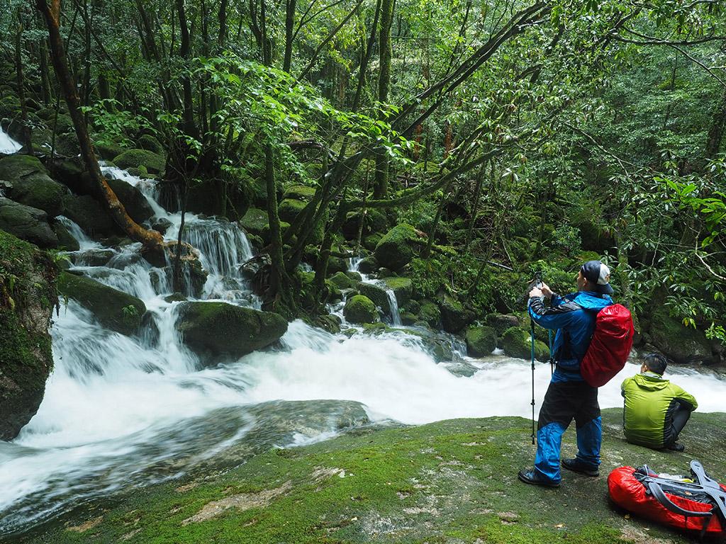 苔の緑と勢いよく流れる水の白、コントラストが本当に美しく魅入ってしまうお二人の写真