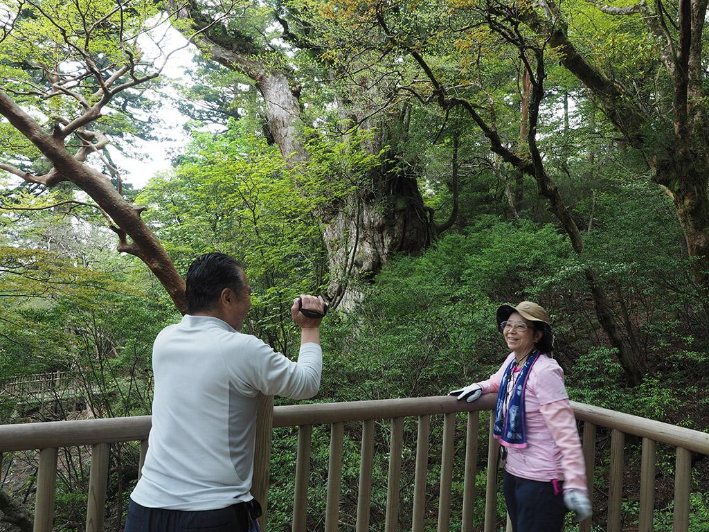 念願の縄文杉と対面して、嬉しそうに動画を撮るお二人の写真