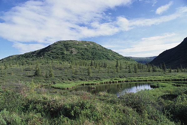 Wonder Lakeと呼ばれる湖の反対側の風景写真