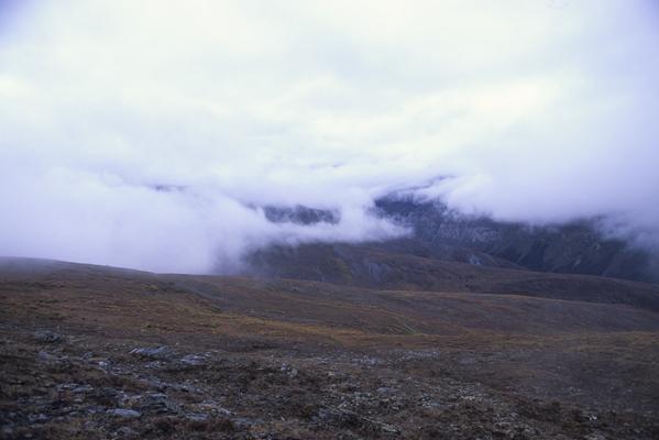 真っ白に覆われていた景色が、強い風に吹き飛ばされて視界が一気にクリアに広がった時の写真