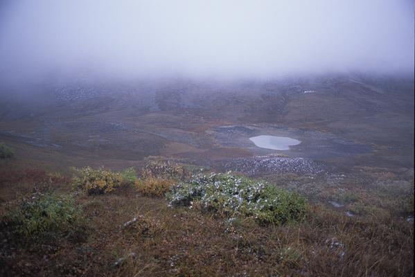 コンパスのない状態でやっと巡り逢えた目的地となる池を最初に見つけた時の遠景写真