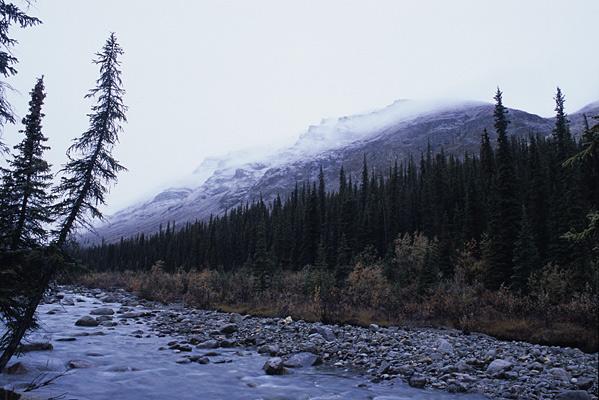 急に冷え込んで、稜線が真っ白になっている風景写真