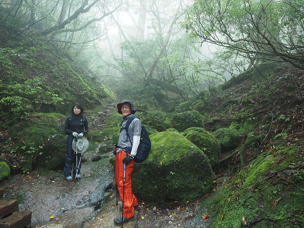 苔むした森を覆い尽くすように広がる霧の世界にて記念撮影
