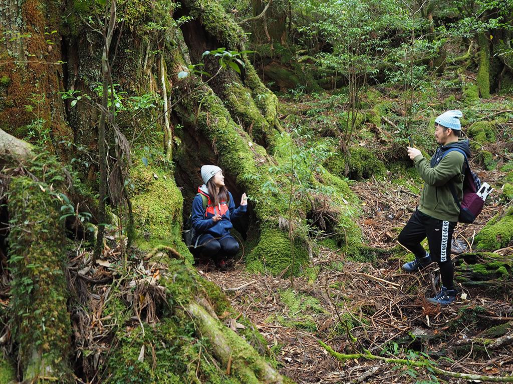 三穂野杉にてふたりで写真を撮っている様子をヨコから撮った写真