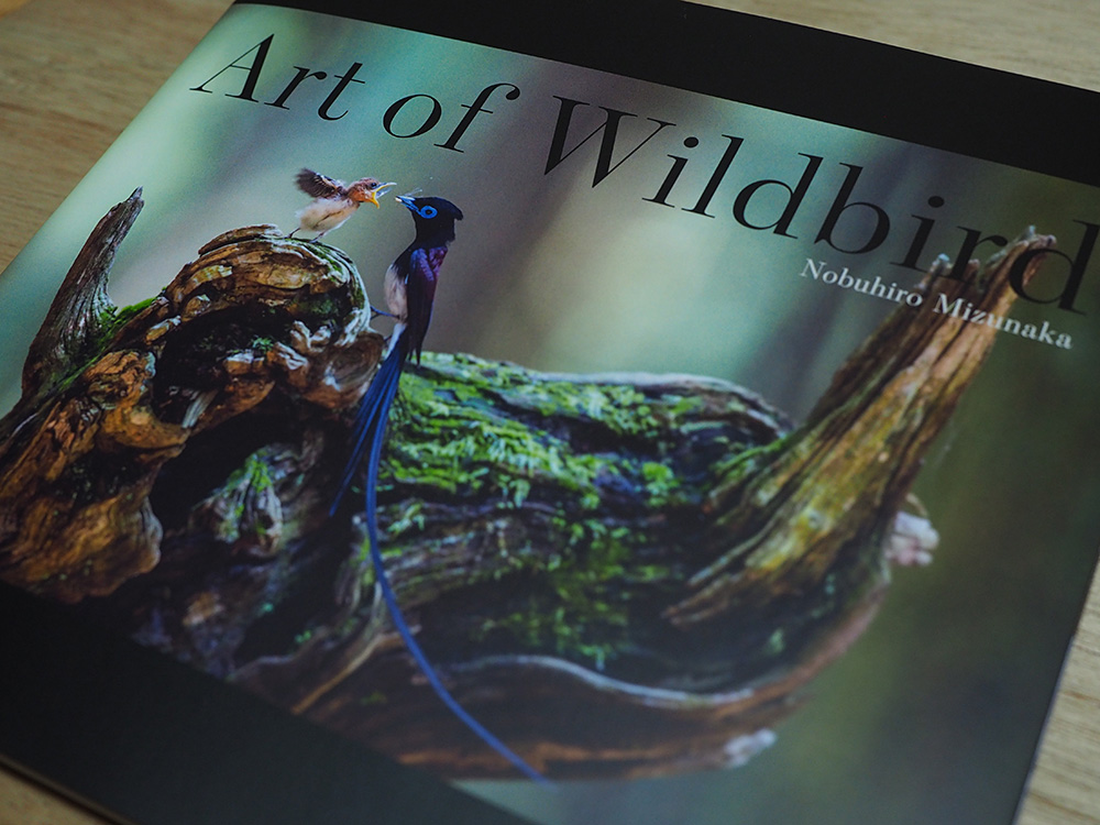 水中伸浩さんの写真集【Art of Wildbird】の写真