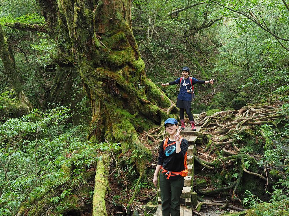 元気に登山道を歩く参加者2人の写真
