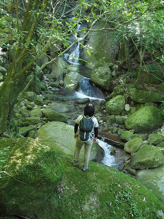 水量が少なめの小さな滝をぼんやりと眺めるTさん
