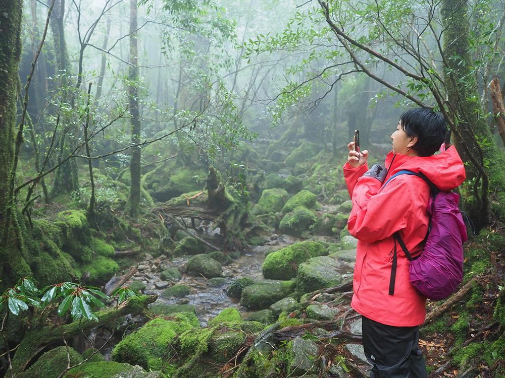 辺り一面苔と霧の世界をスマホで写真に収めるRさん