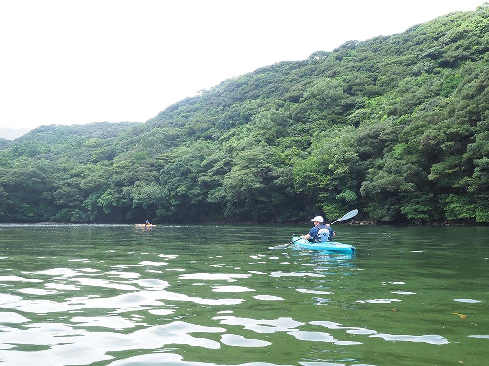 静かな安房川の川面をカヤックで漕ぎ進める二人の写真