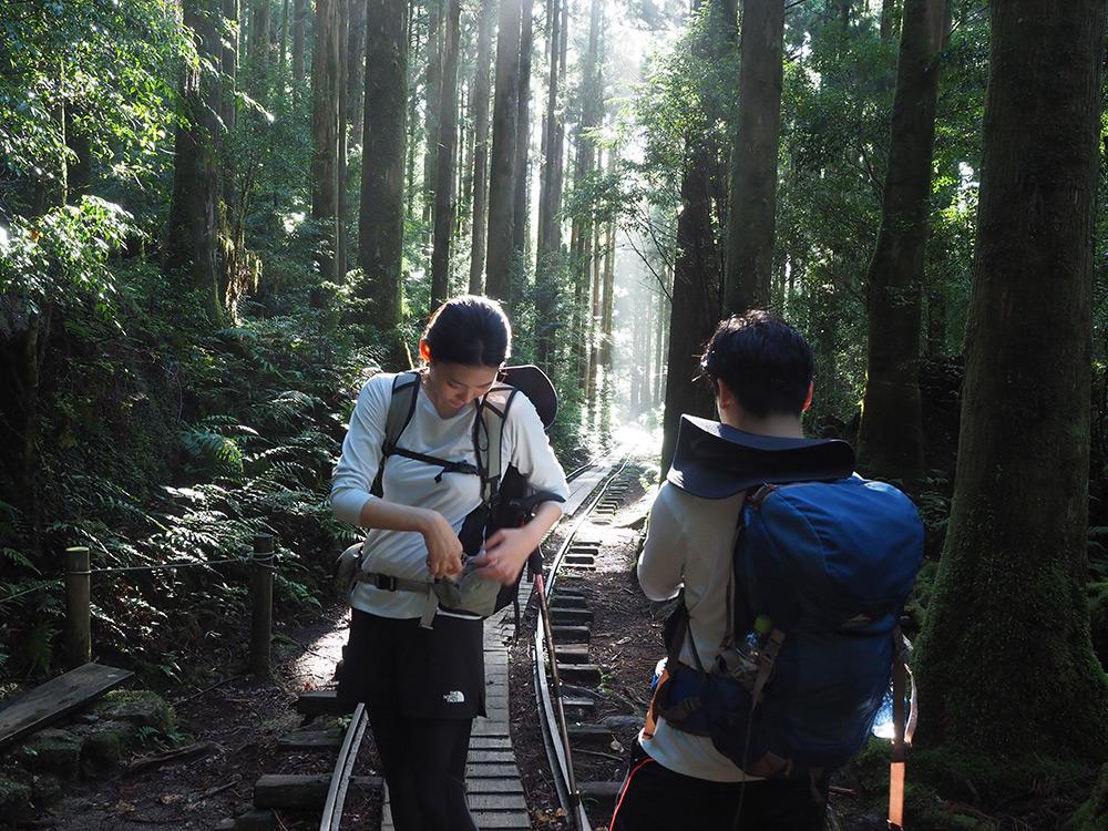 快晴から雨まで全ての天気を1日に詰め込んだような縄文杉ツアー